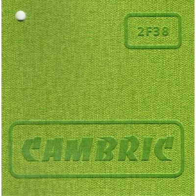 Cambric 2F38 (фисташковый)