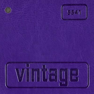 Vintage 5541 (фиолетовый)