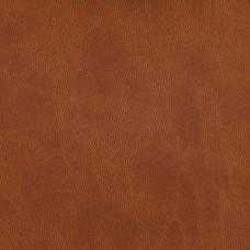 Winner 059 (коричневый)