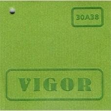 Vigor 30A38 (фисташковый)